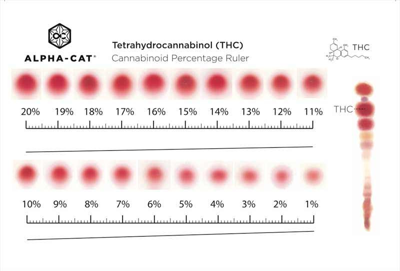 Alpha-Cat Percentage Ruler